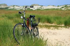 Sand. Cleaning your bike. goRide