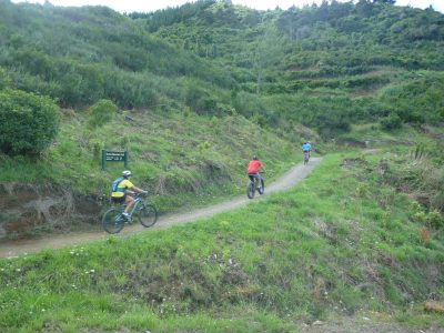 Wide open areas with moderate inclines to climb. Codgers Mountain Bike Park with kids