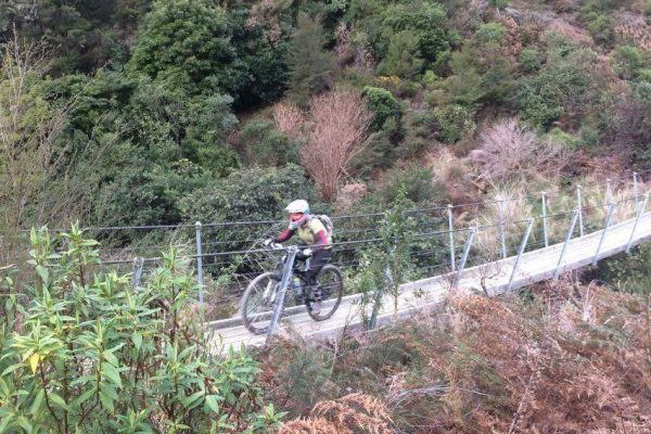 Kidnappers Track swing bridge.  Wairoa Gorge. goRide