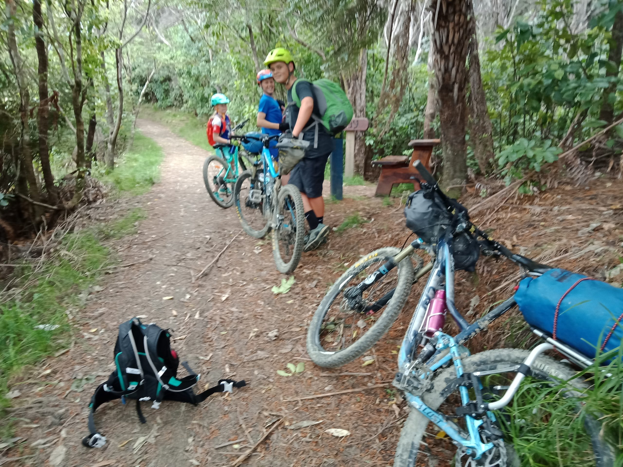 Anakiwa to Mistletoe Bay – Queen Charlotte Track – Riding with Kids